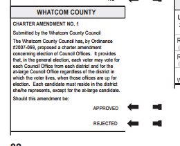 amendment for county wide voting for ballot
