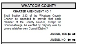 amendment for district only voting for ballot